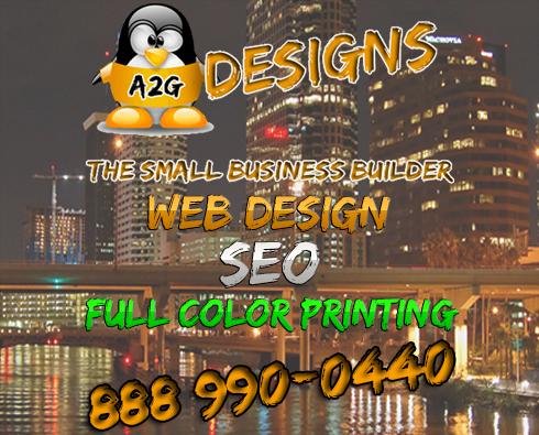 Web Design, Hosting & SEO
